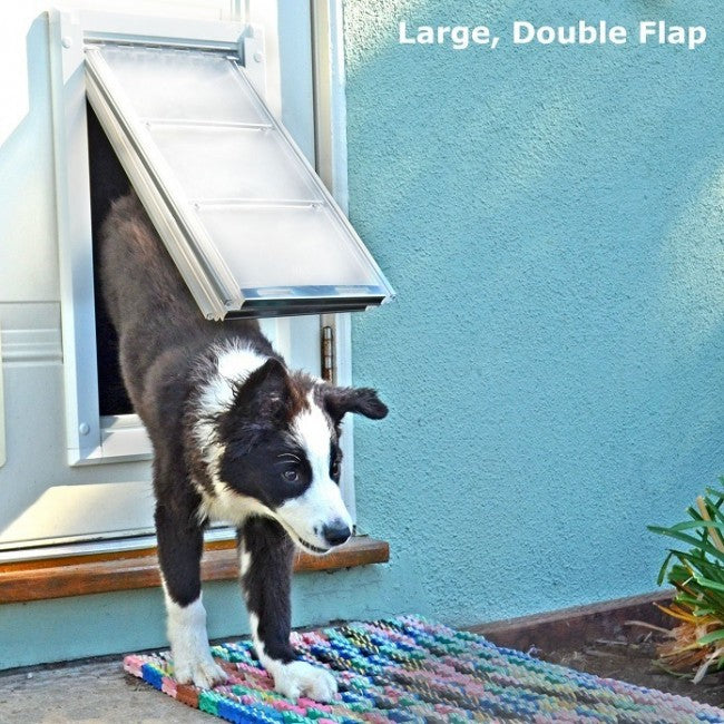 border collie puppy running through endura door mount