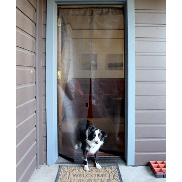 border collie using hanging bugoff screen door