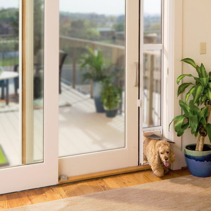 A small curly-haired dog entering a home through the Petsafe Freedom Dog Door for Sliding Glass Doors