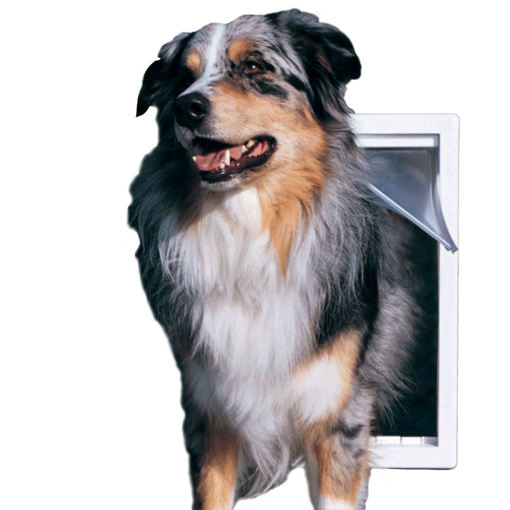 dog walking through ideal designer series original pet door
