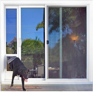 black dog using ideal fast fit patio door insert