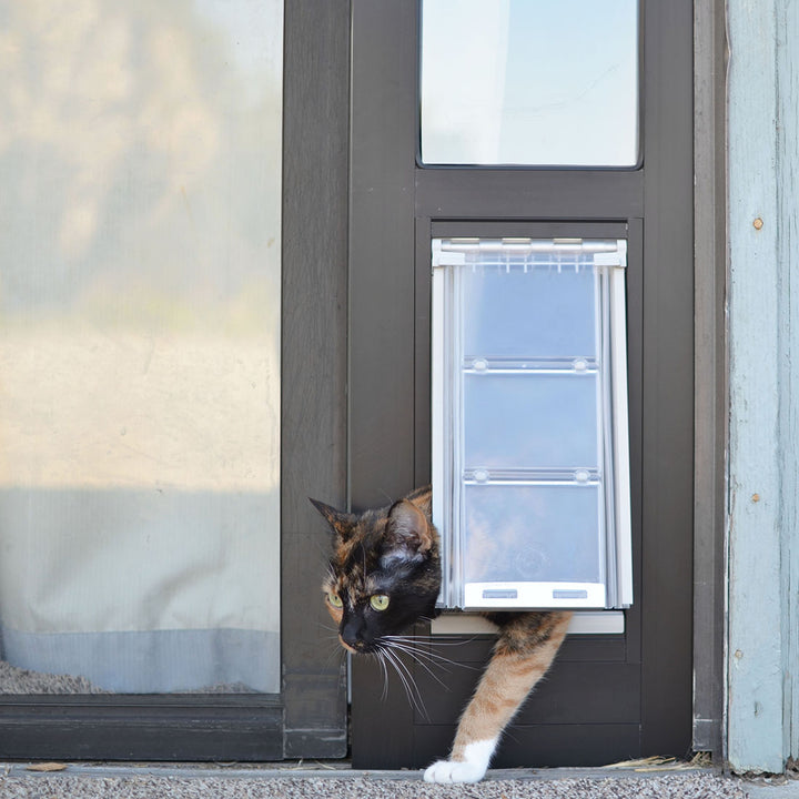 cat using endura flap thermo panel 3e for cats