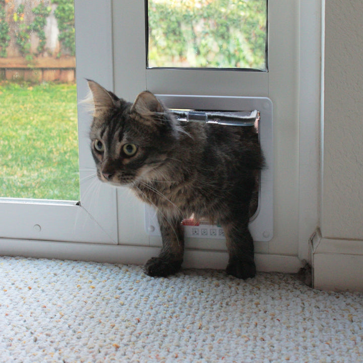 A tabby cat using the Whiskers & Windows Cat Door for Horizontal Sliding Windows