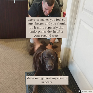 A man pulling back a sad dog. The text on the man reads 'excercise makes you feel so much better and you should do it more regularly the endorphines kick in after your second week.' The text on the dog reads: 'Me, wanting to eat my cheetos in peace.'