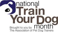 National Train Your Dog Month: how to train your dog with basic dog commands.