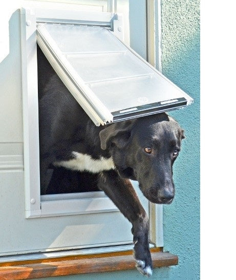 dog walking through one of many cold weather dog doors for winter climates