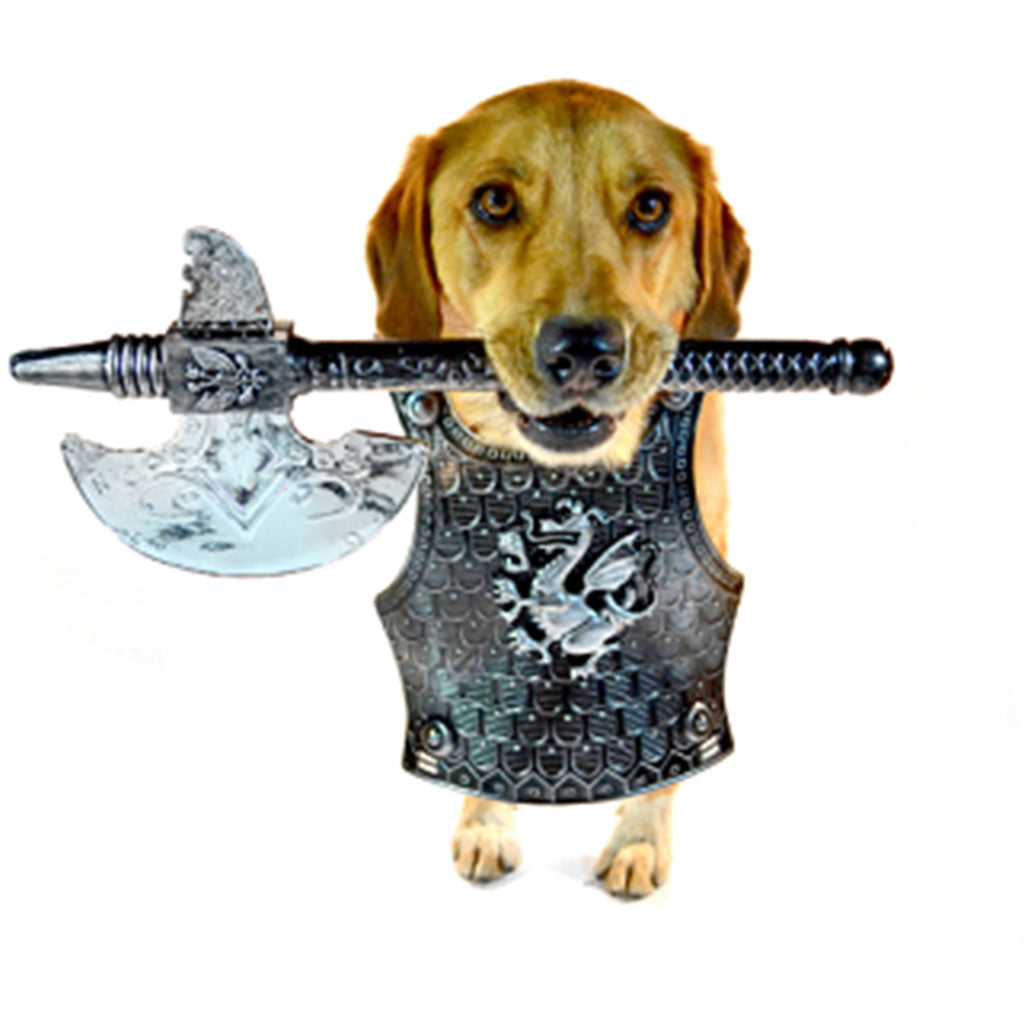 A mix-breed dog with yellow fur wearing a costume medival armor plate and holding a fake battle ax in his mouth.