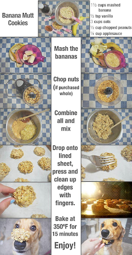 Banana Mutt Recipe Cooking Instructions with pictures - homemade dog treats recipe
