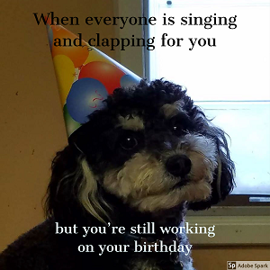 A  dog wearing a birthday hat while looking awkward. The text reads: 'When everyone is singing and clapping for you but you're still working on your birthday.'
