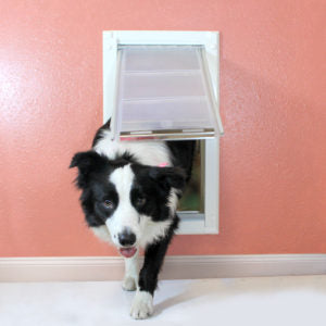 "A Border Collie entering a house through the Endura Flap® Single Flap Wall Mount, which has a durable aluminum frame and tunnel for walls up to 8"" thick"