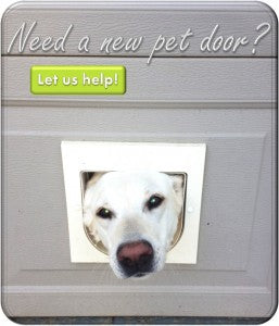 A white dog sticking its head out of a too-small cat door with text that reads 'Need a New Pet Door? Let Us Help!