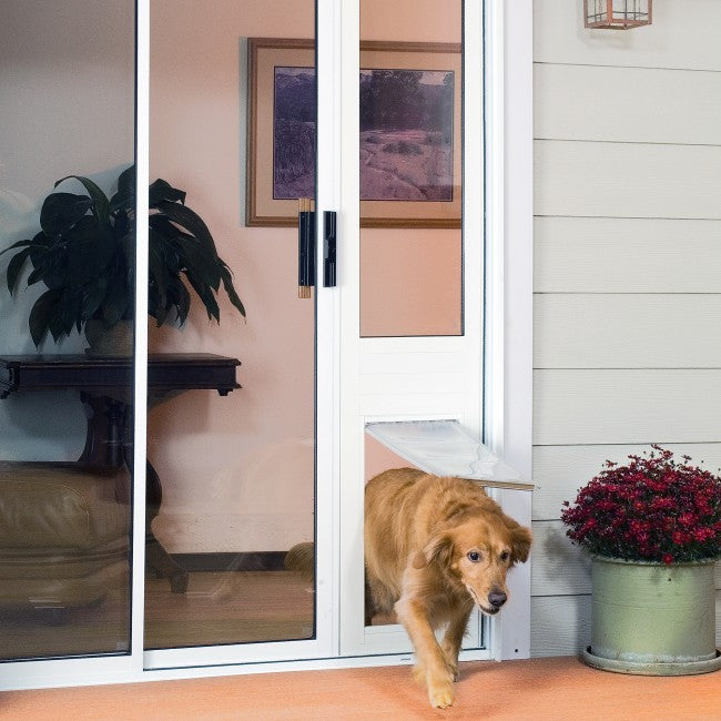 dog walking through the Endura Flap, the most insulating dog door for sliding glass door