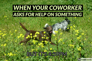 Two dogs frolicking in an idyllic meadow. The text reads: 'when your coworker asks for help on something but it's 4:59PM'