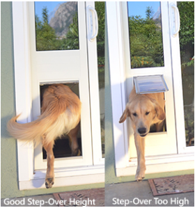 Dog using sliding door dog door insert fopr sliding glass door dog door