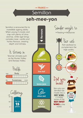 Semillon Infographic from wineselectors.com.au