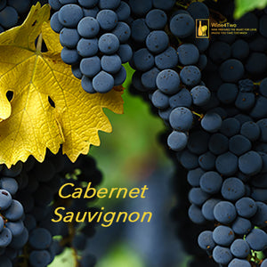 "6 Bottles of 2018 ""CEO"" Cabernet Sauvignon - Noble Red Wine"