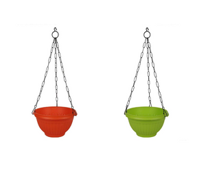 Daisy Hanging Basket ( Set of 2 ) - 8 Inches