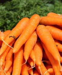 Carrots (Kuroda) English Vegetable Improved Seeds Small pack