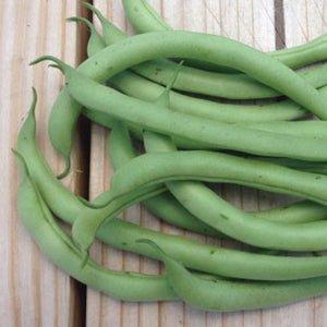French Beans Containder - Desi Vegetable Seeds