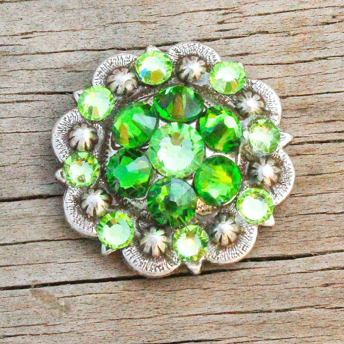 Fern & Lime Antique Silver Conchos & Buckles