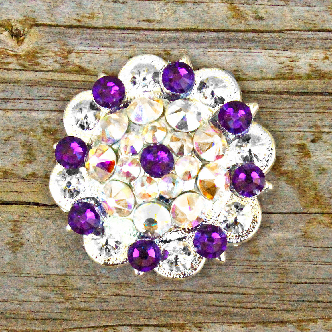 AB & Dark Purple Bright Siver Conchos & Buckles