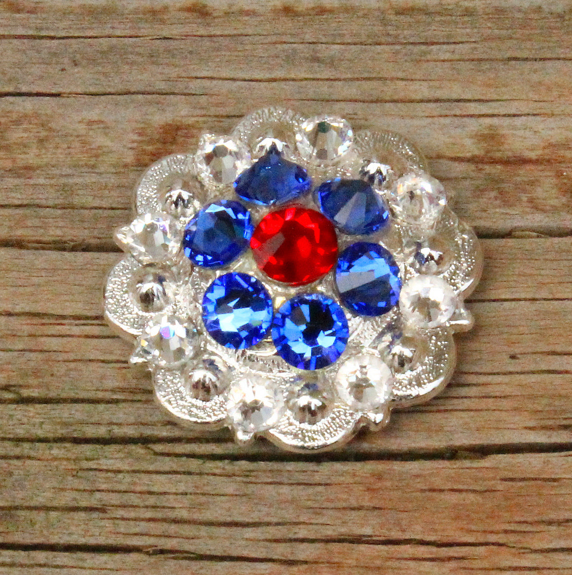 Red, Clear & Sapphire Bright Siver Conchos & Buckles
