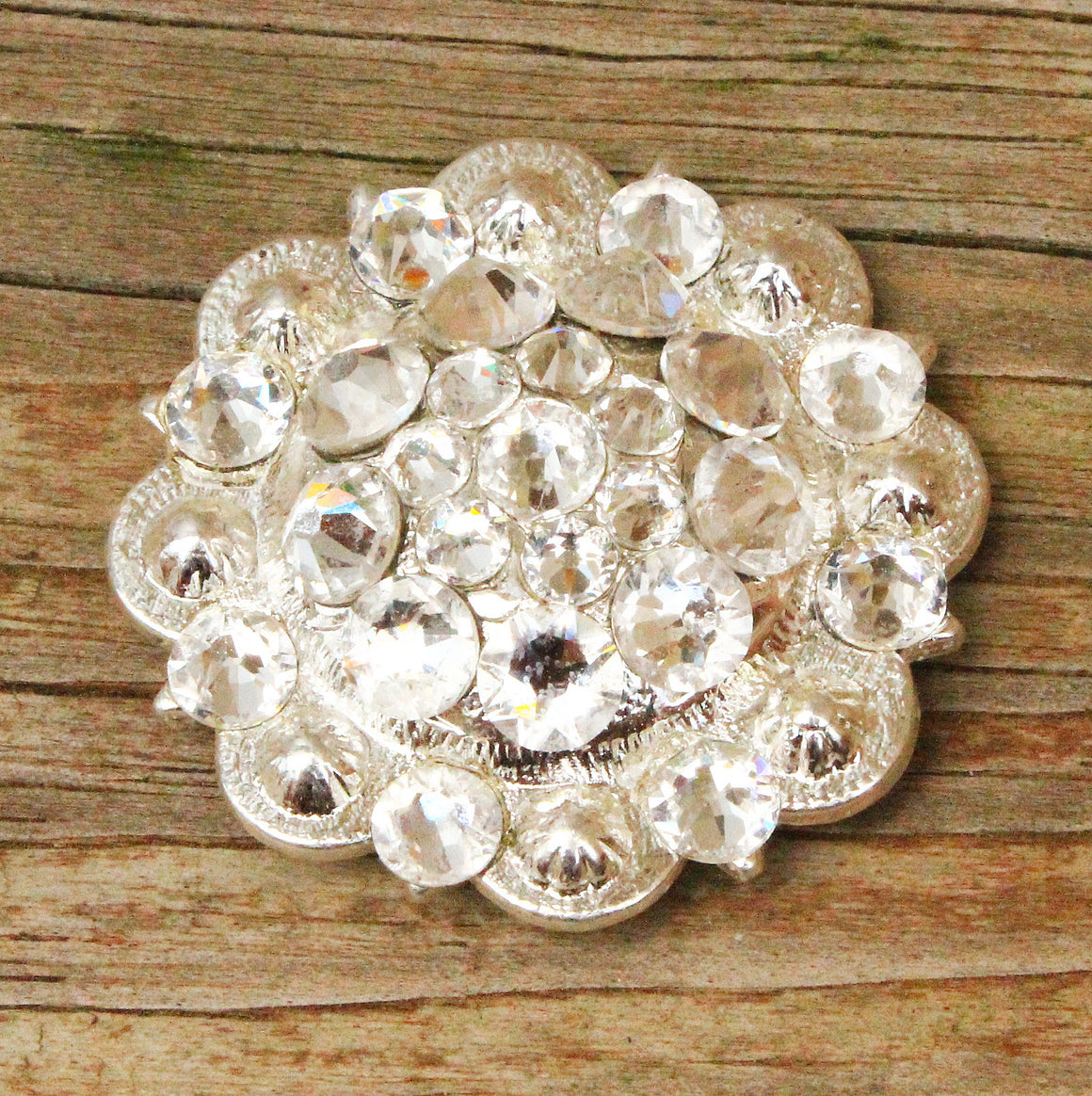 Clear Bright Siver Conchos & Buckles