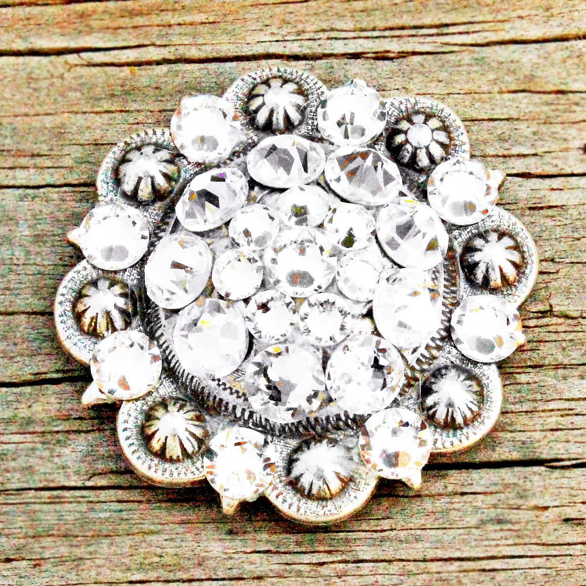 Clear Antique Silver Conchos & Buckles