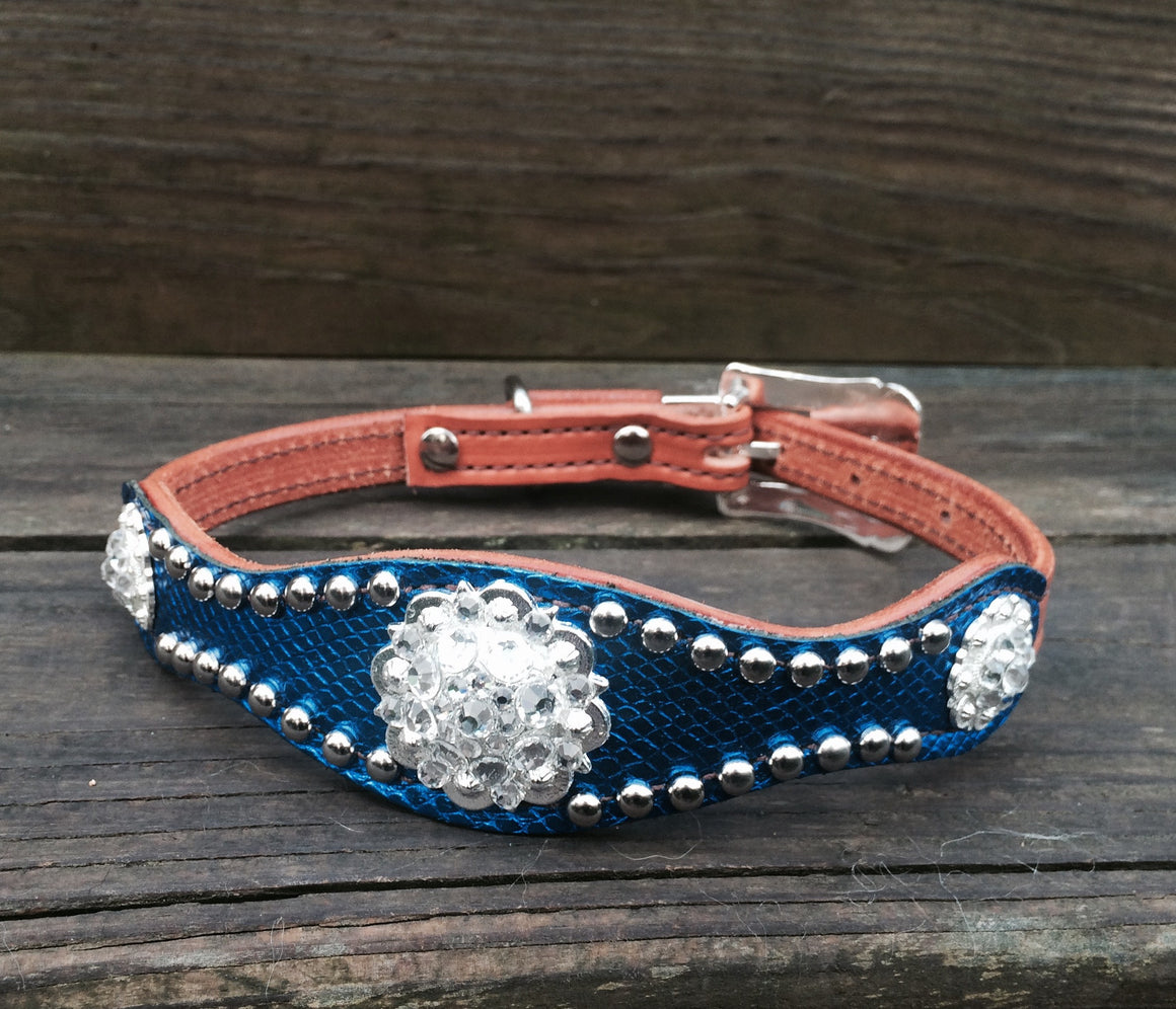 Electric Royal Blue Scallop Dog Collar w/ Clear Rhinostone Bright Silver Conchos & Buckle