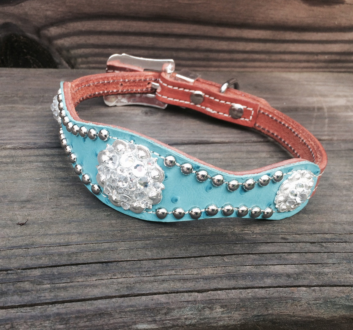 Turquoise Ostrich Scallop Dog Collar w/ Clear Rhinostone Bright Silver Conchos & Buckle