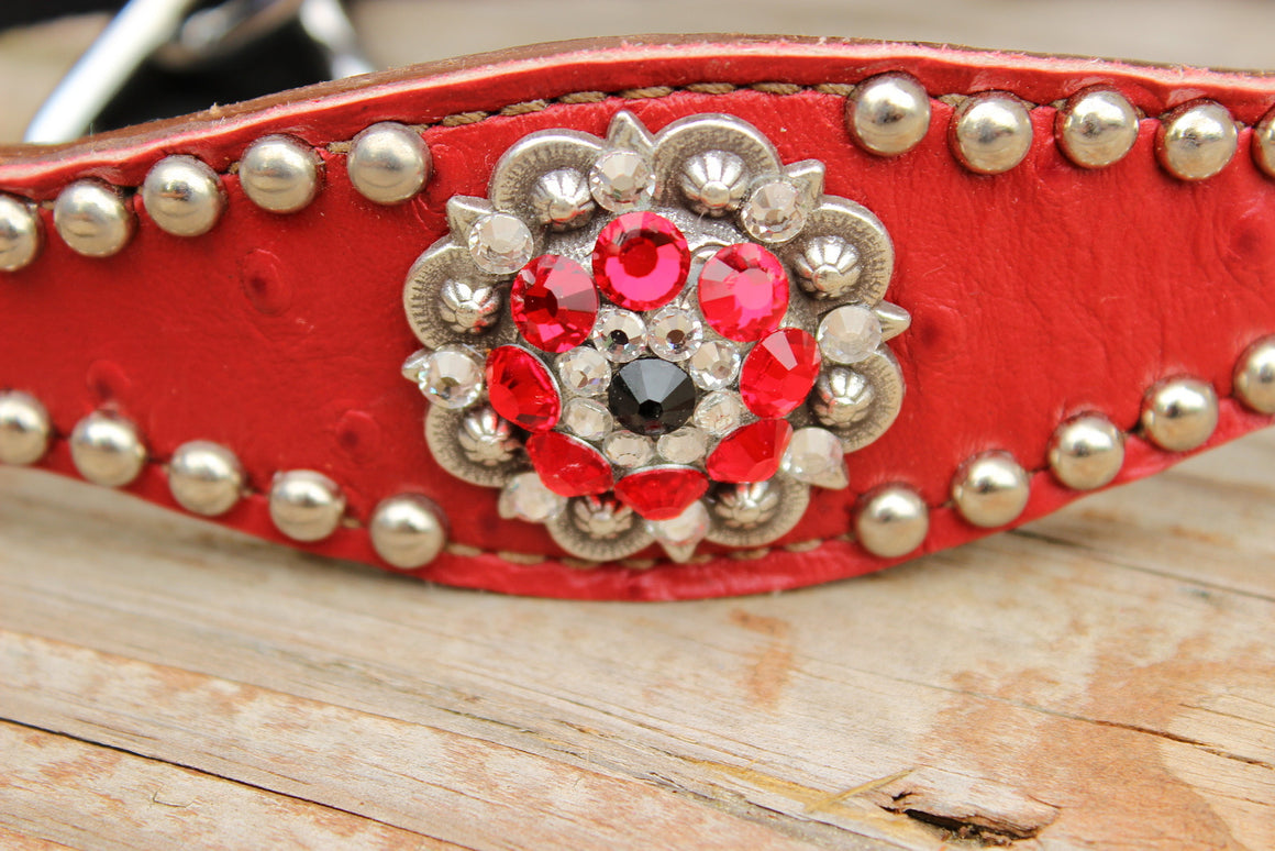 Red Ostrich/Tan Leather Bronco Halter w/Red, Clear & Black Crystal Rhinestone Concho