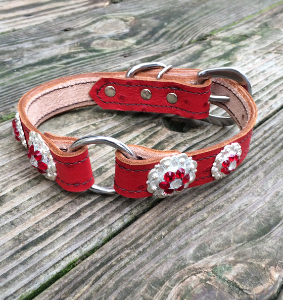 Red Ostrich 1 Inch Center Ring Dog Collar with Red and Clear Conchos