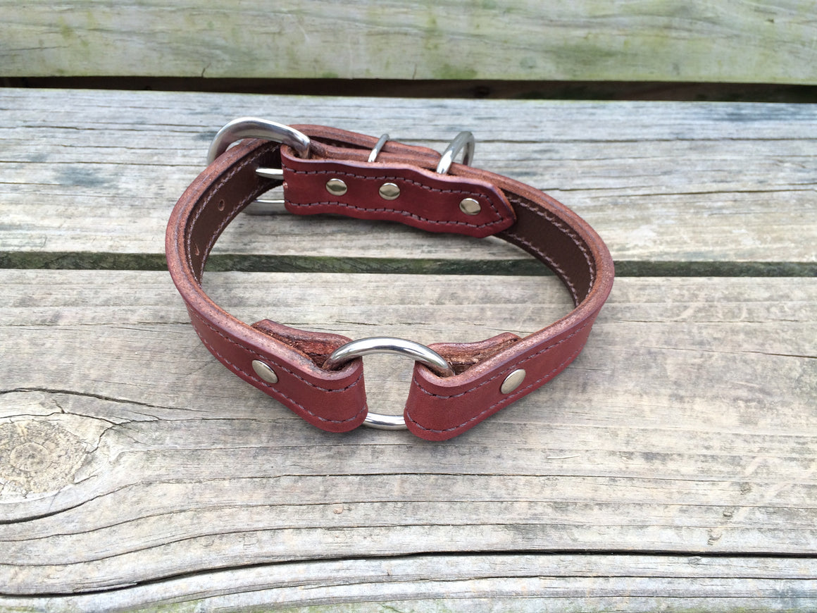 Heavy Duty Chestnut Leather 1 Inch Center Ring Dog Collar