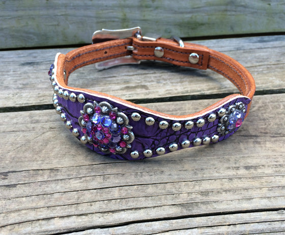 Ant. Purple Gator Scallop Dog Collar w/ Purple & Fuchsia Rhinostone Conchos & Buckle