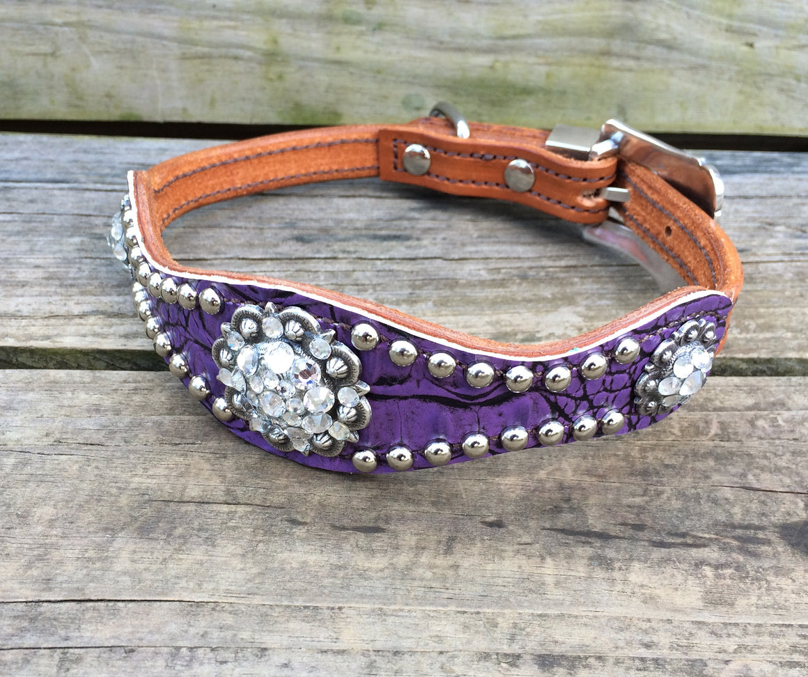 Ant. Purple Gator Scallop Dog Collar w/ Clear Crystal Rhinostone Conchos & Buckle