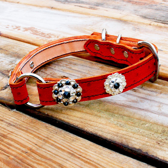Red Ostrich 1 Inch Center Ring Dog Collar with Jet and Clear Conchos