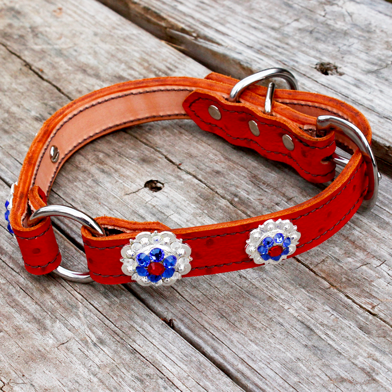 Red Ostrich 1 Inch Center Ring Dog Collar with Red, Blue and Clear Conchos