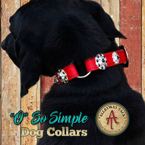 "Custom ""O"" So Simple Dog Collars"