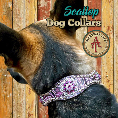 Custom Scallop Dog Collar w/Rhinestone Conchos & Buckle