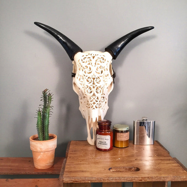 Decorative cow head skull with a plant and candles