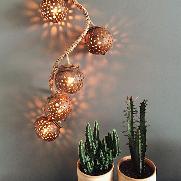 Hanging string lights with plants