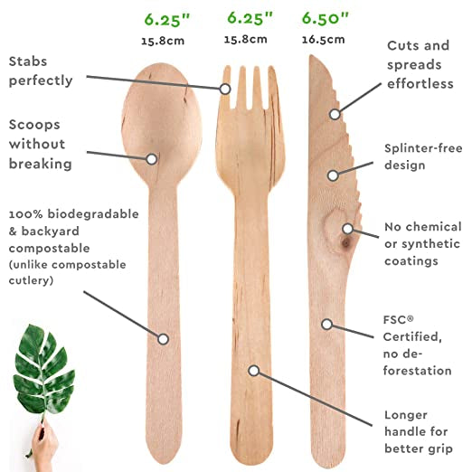 Disposable Wooden Spoon (500pcs) - Ecofrenli.com