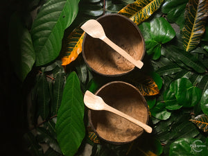 Organic Coconut bowl & spoon set - Ecofrenli.com