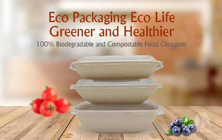 Eco Takeaway Food Box 5 Compartment with Lid Cover