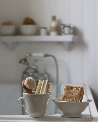 Natural cleaning tools on a kitchen counter