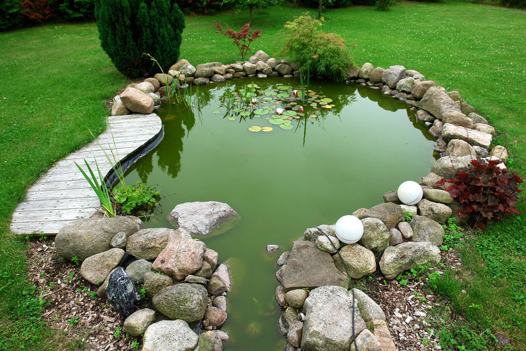 Best Use of Lime for Ponds, Birdbaths and more