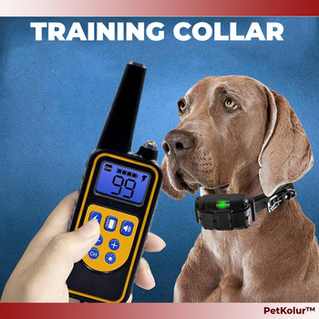 Electric Prong shock Behavioral Training Collar kit for Dogs