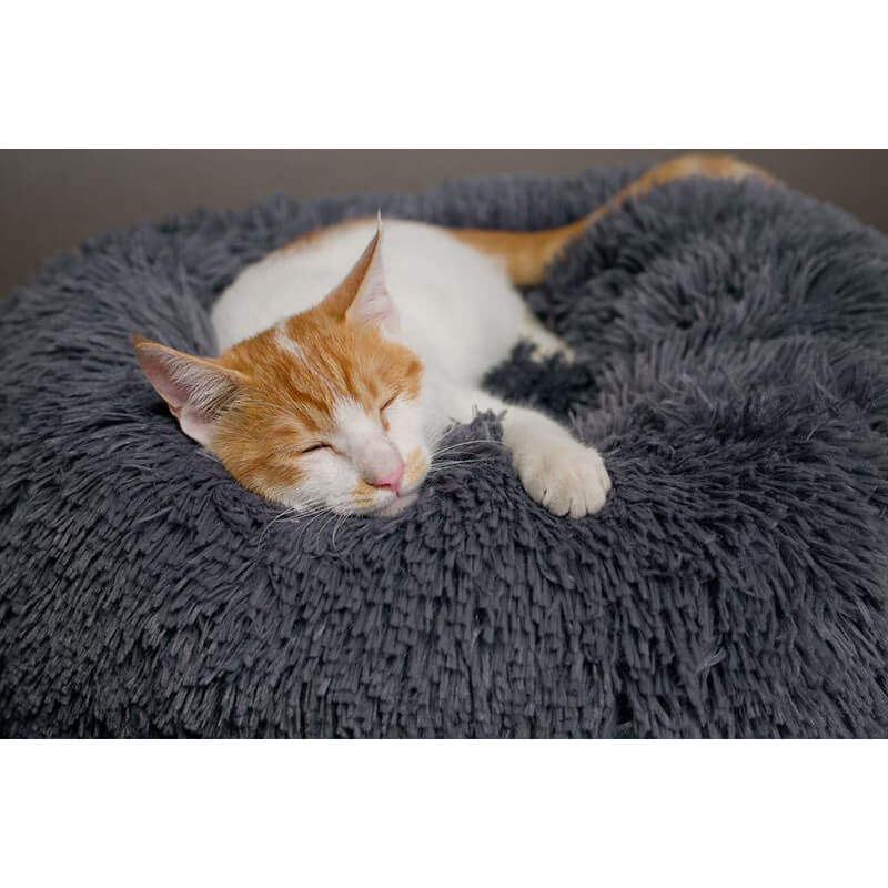 BossPet™ Cat Bed with Super Soft Cute Kennel