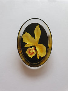 1950s Black Lucite Brooch With Yellow Flower