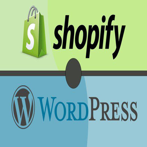 Custom Built Websites On Shopify & Wordpress